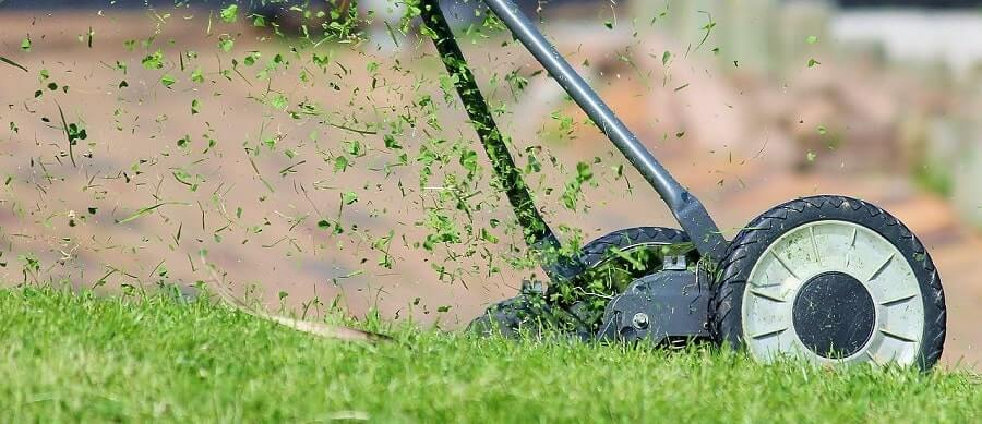 Lawn Mower Close Up
