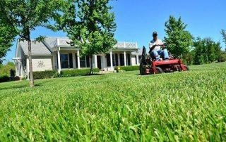 8 Best Riding Lawn Mowers for Rough Terrain [year] + FAQs
