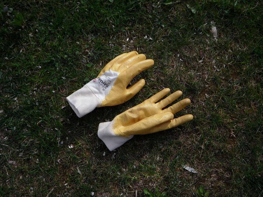 Gardening gloves on grass