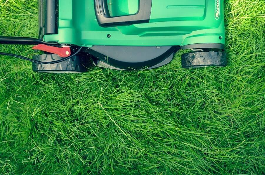 Green lawn mower on green grass