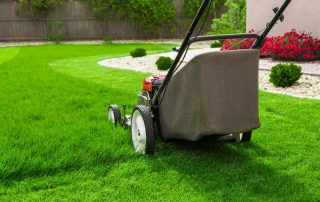 The 8 Best Lawn Mowers For Small Yards Reviewed (2020)