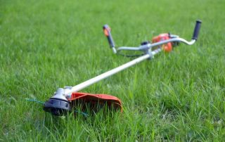 Edger Vs Trimmer - Which One is Best for Your Lawn?