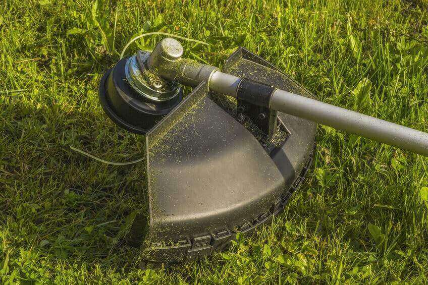Trimmer with string line on grass
