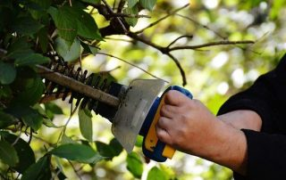 The 19 Best Electric Hedge Trimmers Reviewed 2020