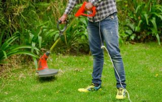 The 17 Best Commercial Weed Eaters (Trimmers) of [year]