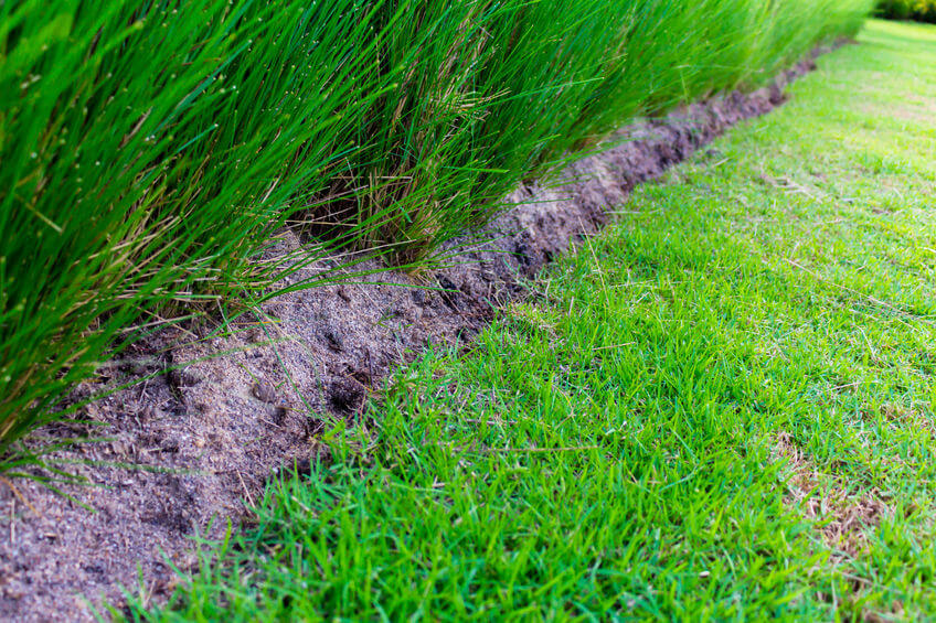 The 9 Best Weed Killers For Bermuda Grass Reviewed 2020