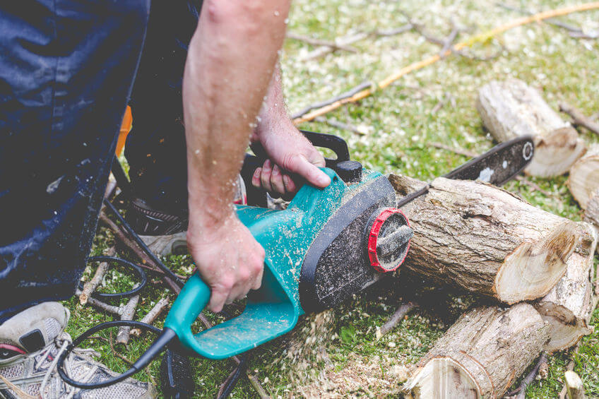 lumberjack cuts a tree in the garden with eletric chainsaw