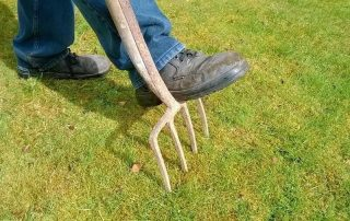 Aerating vs. Dethaching - Which is Better for Your Lawn?