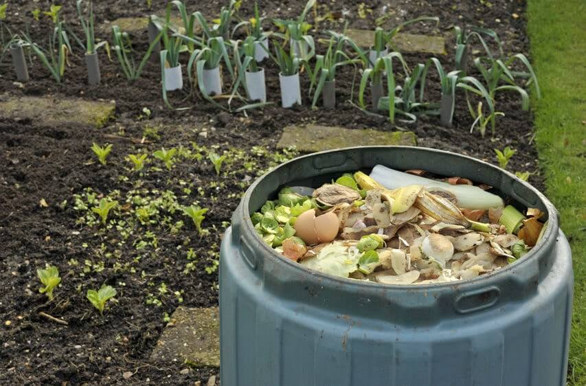 Outdoor compost bin