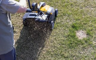 The 8 Best Lawn Aerators [year] - Get Better Grass Drainage