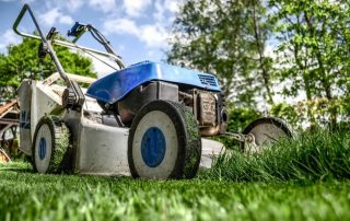 Greenworks VS Ego: The Ultimate Stand-Off of Lawnmowers 2020