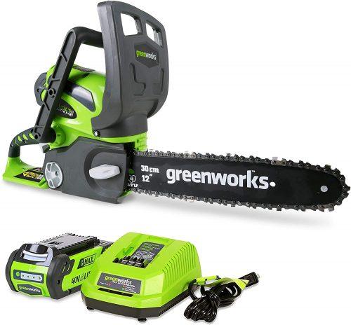 Greenworks Cordless Chainsaw