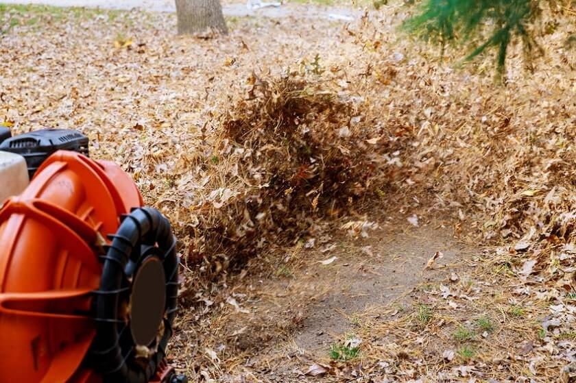 heavy duty leaf blower blowing leaves