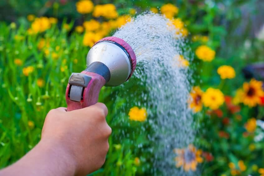 Close up view on a hand with a sprinkler
