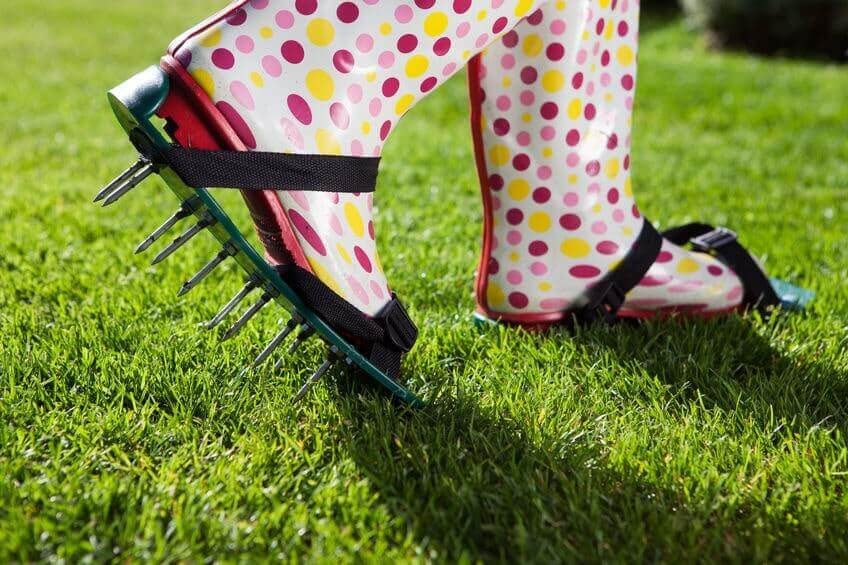 lawn aeration shoes