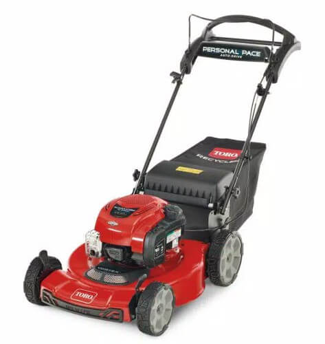 Toro Recycler Briggs And Stratton Gas Lawn Mower