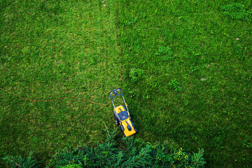 electric lawn mower on yard view from top