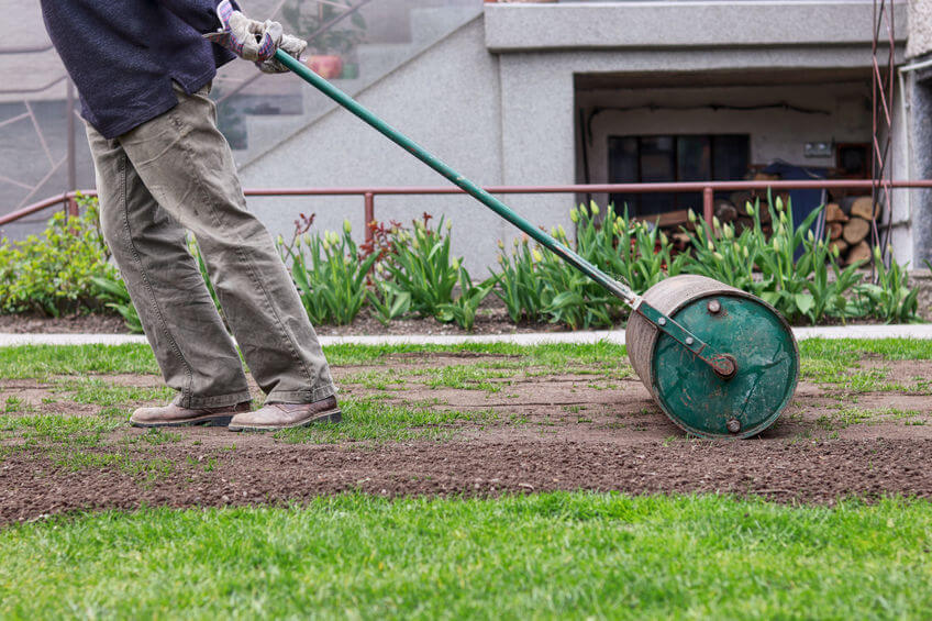gardener pulling a lawn roller