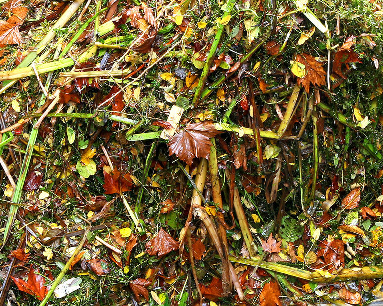 grass and leaves compost