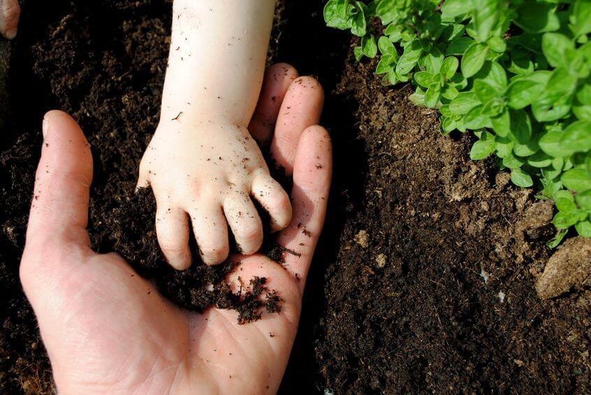 kids and parents hand in garden closeup