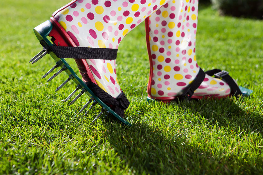 lawn aerating with spikes