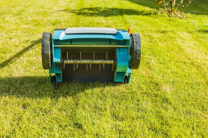 lawn aerator on green lawn closeup