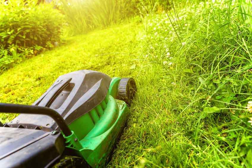 man cutting grass with battery powered lawn mower in backyard