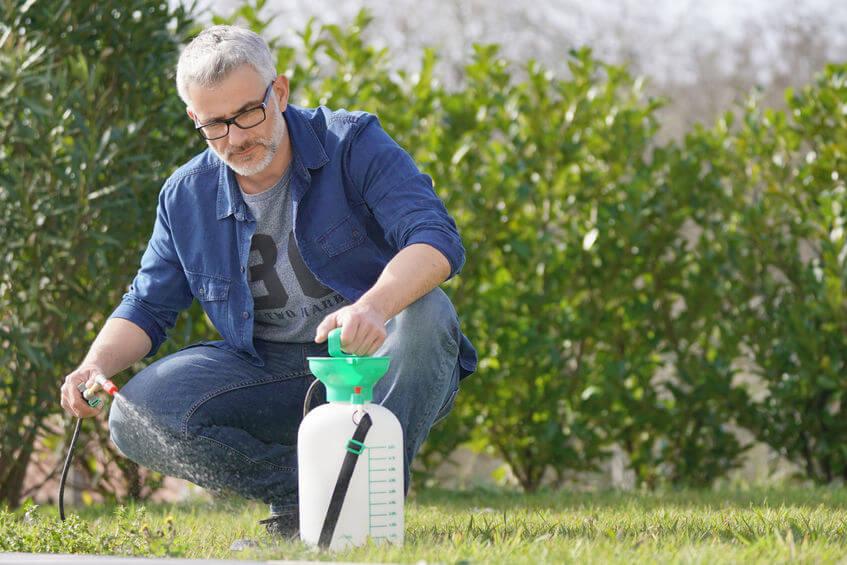 man using garden sprayer in backyard
