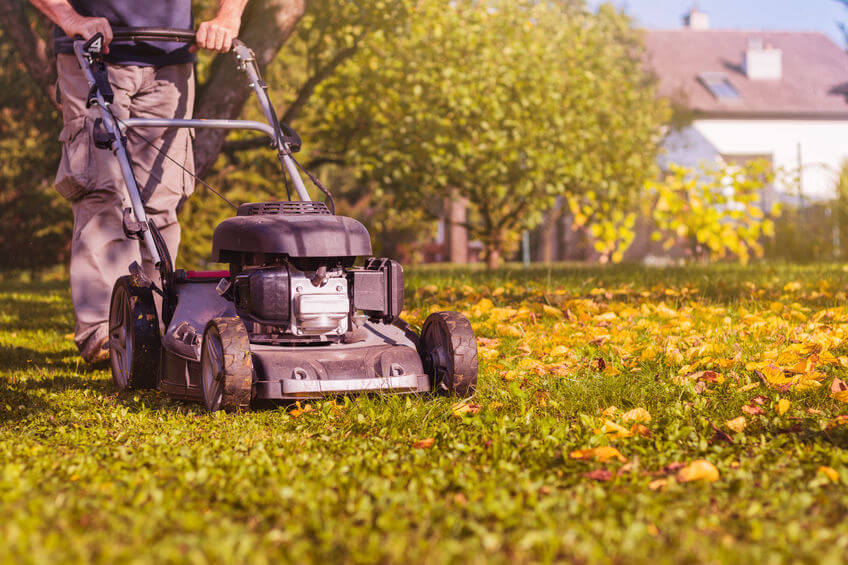 mowing the grass with a push lawn mower in garden