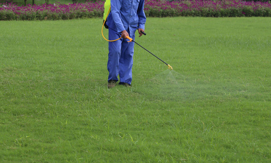 person fertilizing lawn with liquid fertilizer