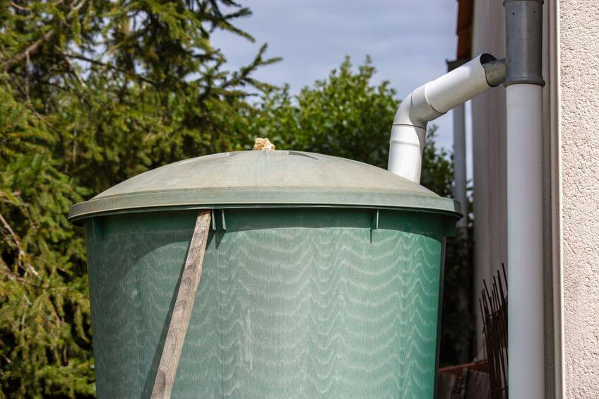 rainwater harvesting barrel