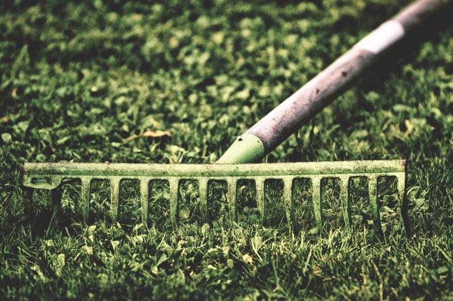 rake in garden