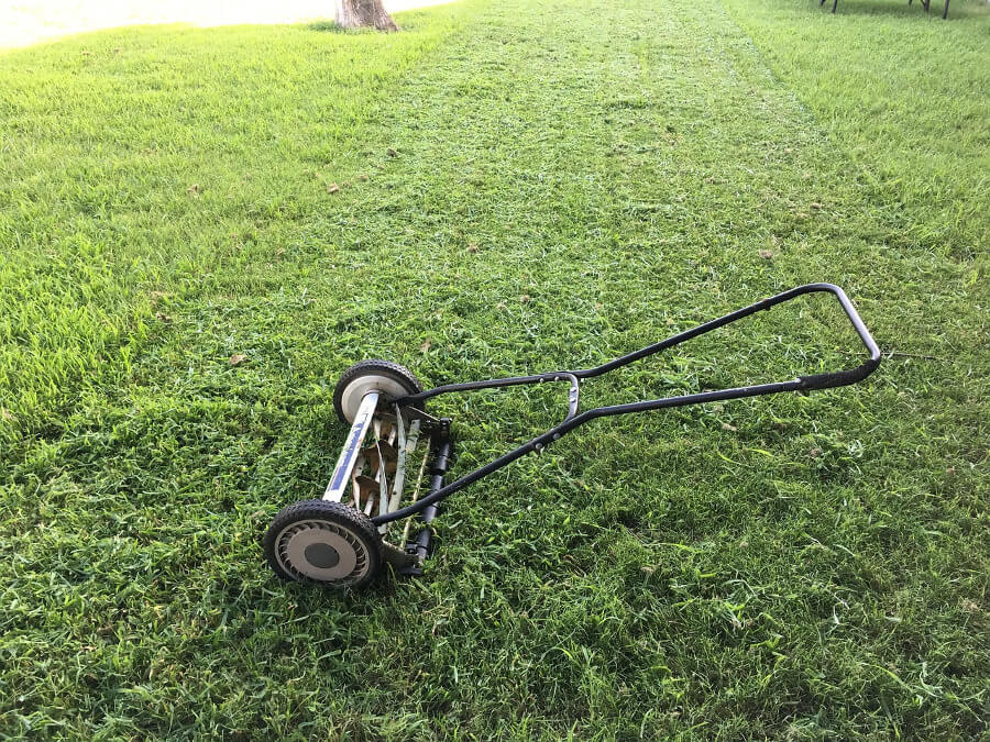 reel lawnmower in grass