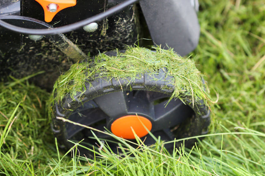 wheel of a lawnmower after mowing wet grass