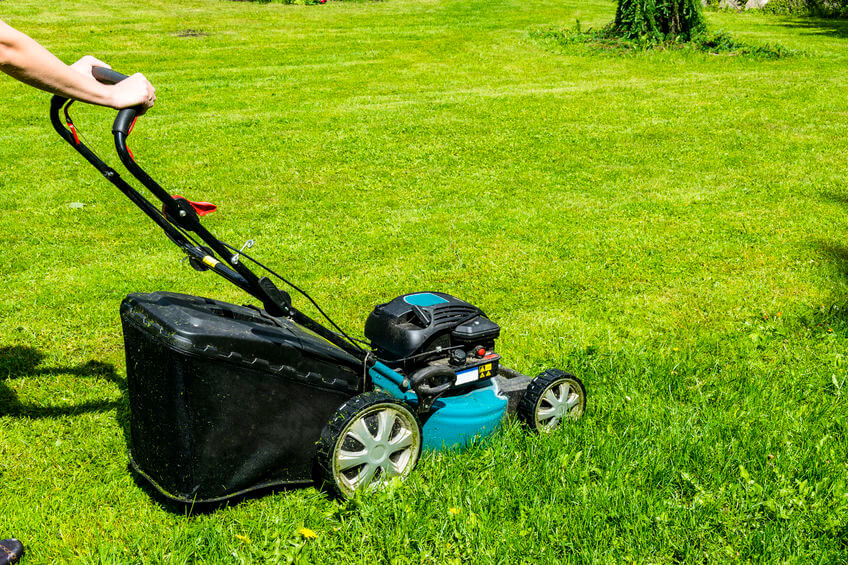 woman cuts the lawn with gas powered push lawnmower