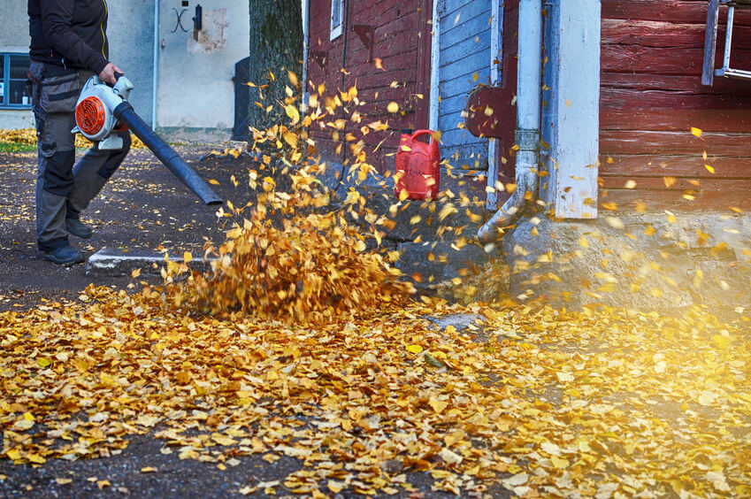 worker in autumn with leaf blower