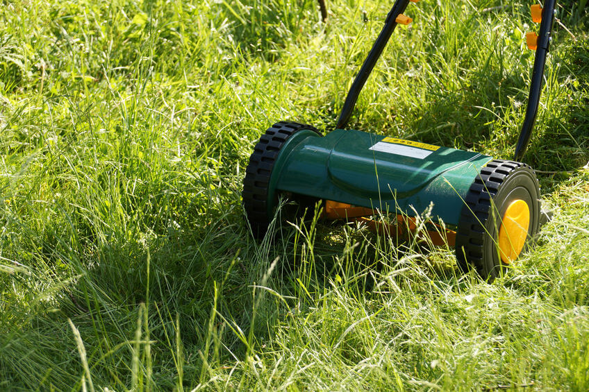 working with a reel mower