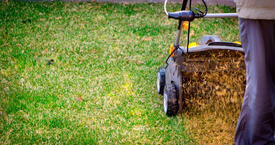 yellow aerator on green lawn